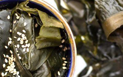 gesund leben mit nahrungsmittel aus algen algamar. Black Bedroom Furniture Sets. Home Design Ideas