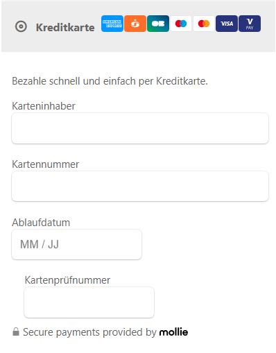 Screenshot den Eingabefeldern für Kreditkartenzahlungen.