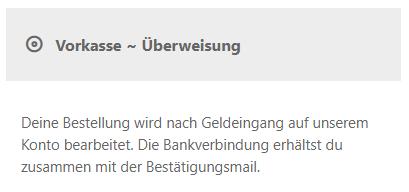Screenshot mit Auswahl der Zahlungsart Vorkasse