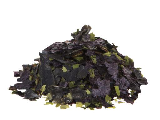 Algamar Algen für Salat (Wakame, Nori, Meersalat)