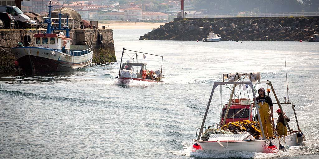 Foto von zwei Algamar Booten, die zur Algenernte auslaufen